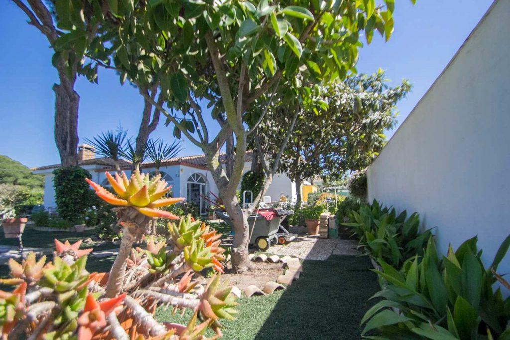 El jardín es un vergel de flores, arbustos y arboles frutales